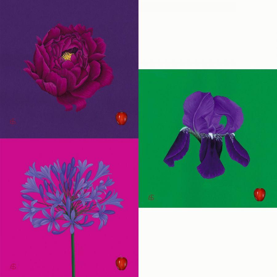 3 Flowers Coasters