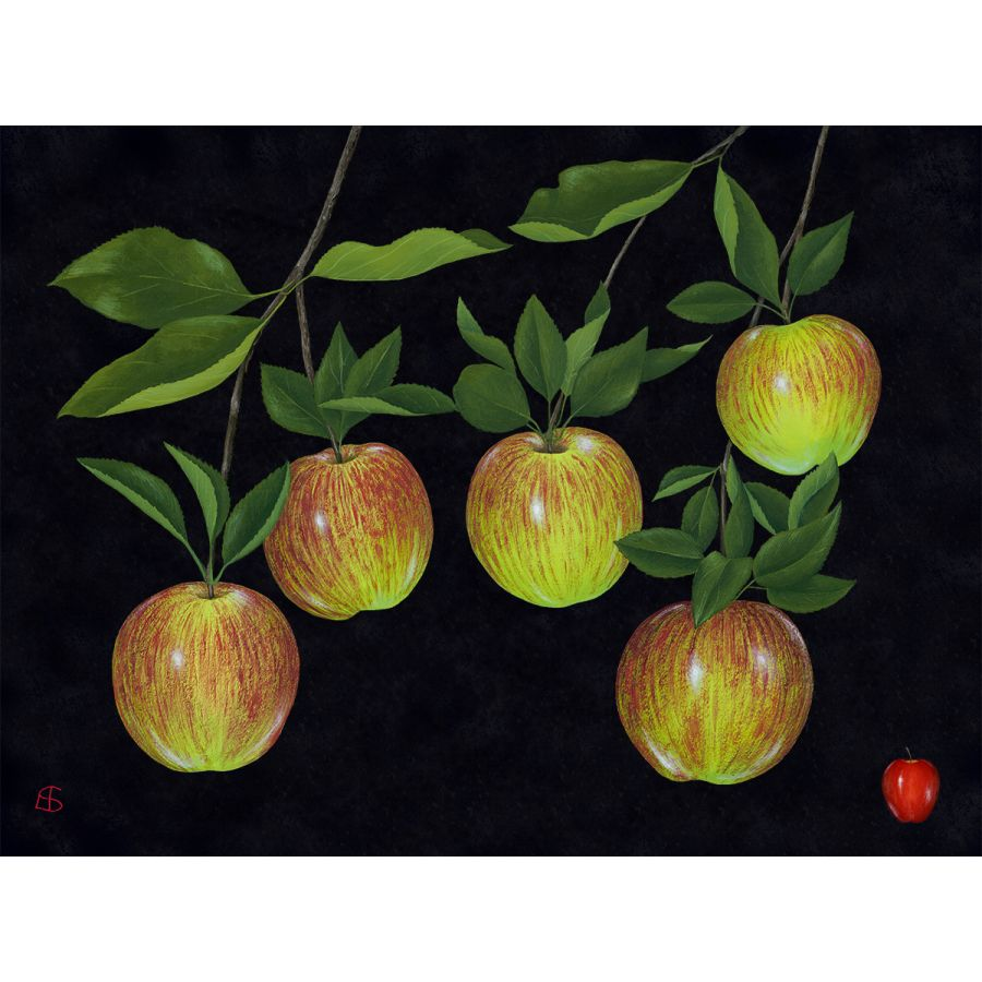 Five Apples on Black Table Mats