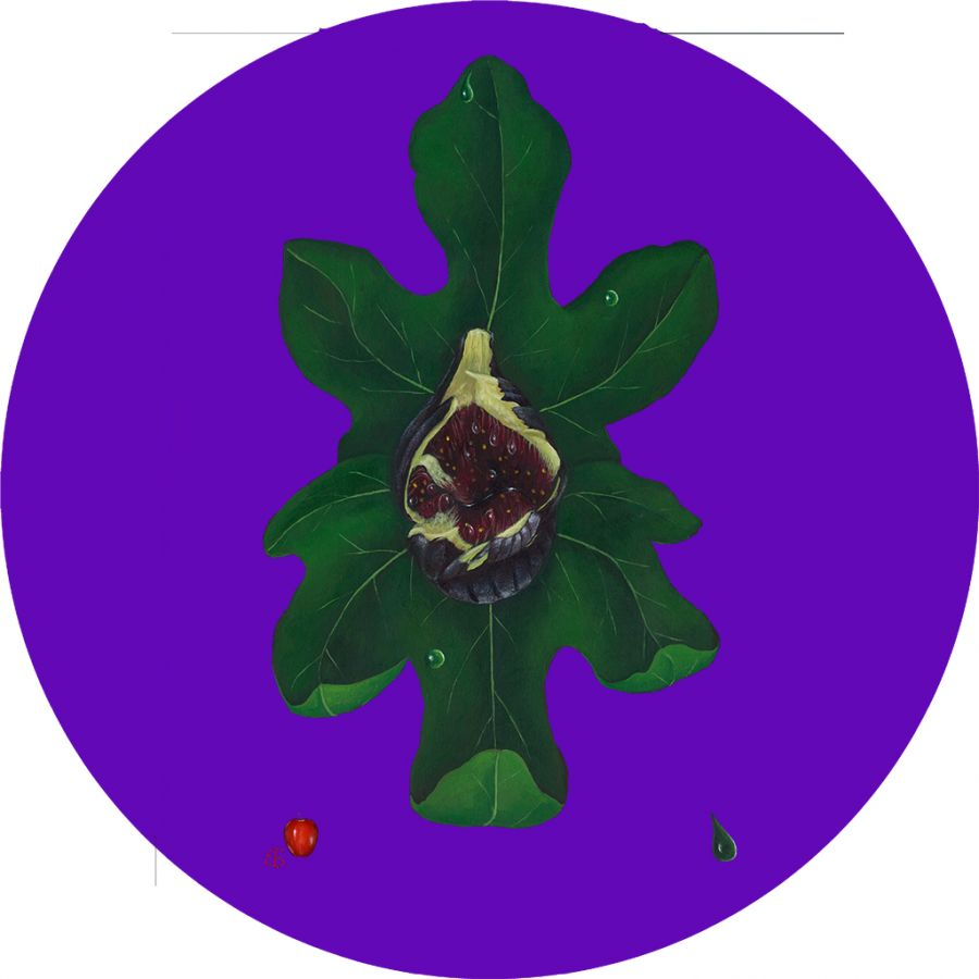 Fig on Purple Round Table Mats