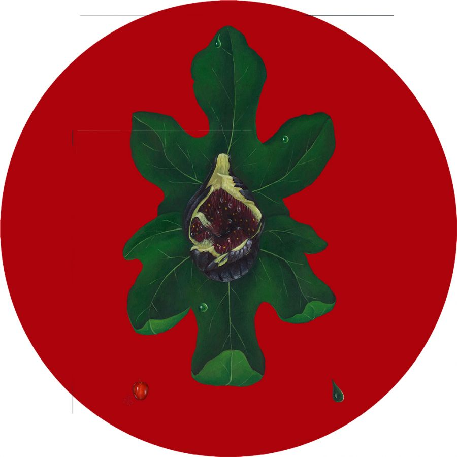 Fig on Red Round Table Mats