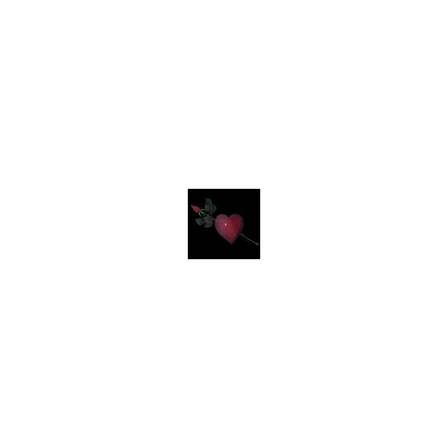 Heart & Rose Black Cotton Apron