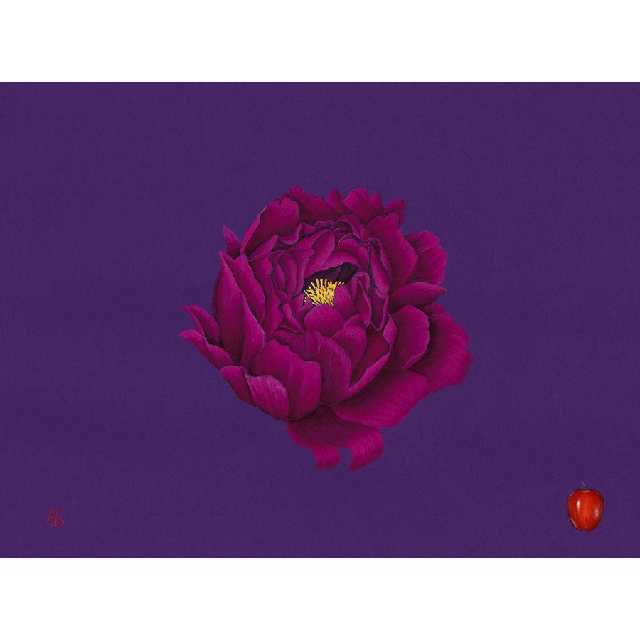 Peony on Purple Table Mats