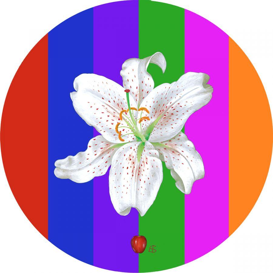 White Lily on Multi-stripes No.2