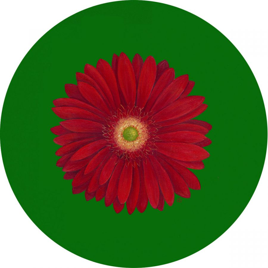 Red Gerbera on Green Glass Trivet