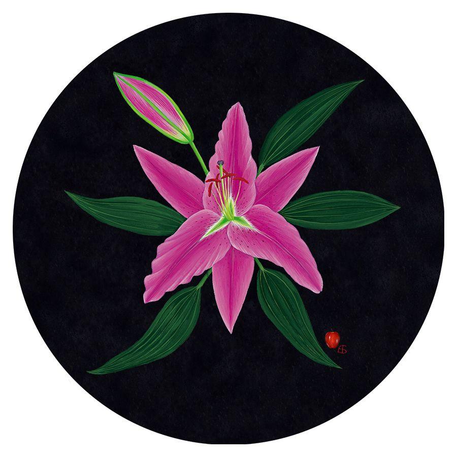 Pink Lily on Black' Trivet