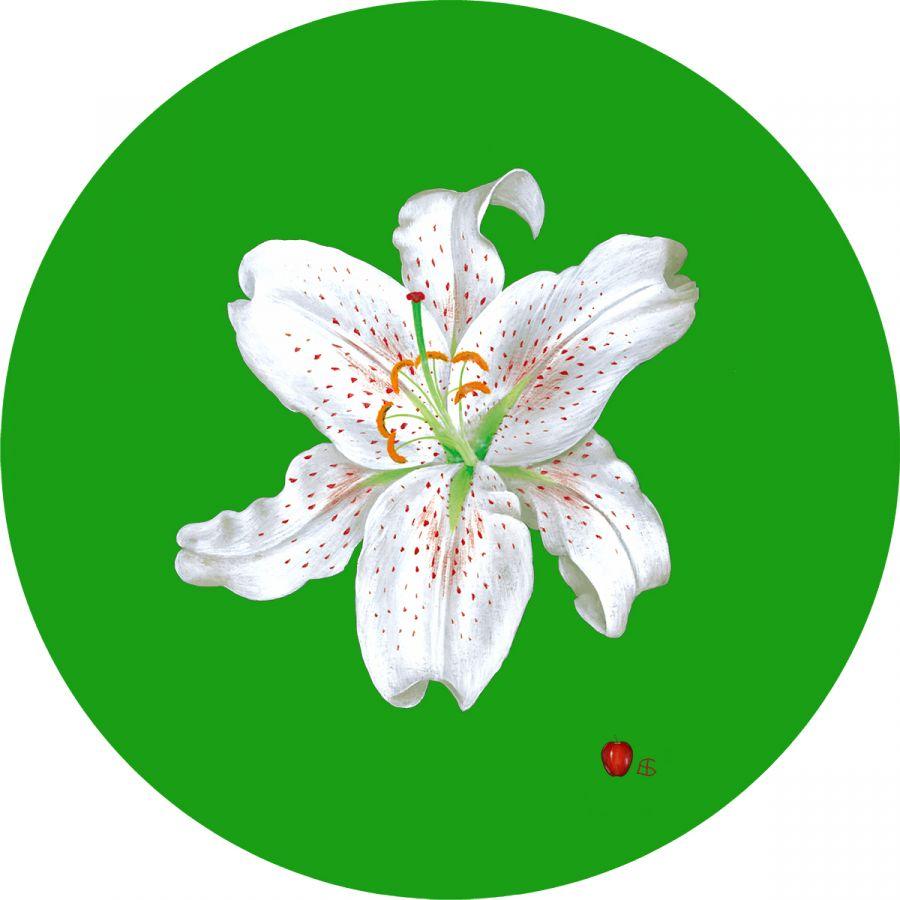 White Lily' on Green Trivet