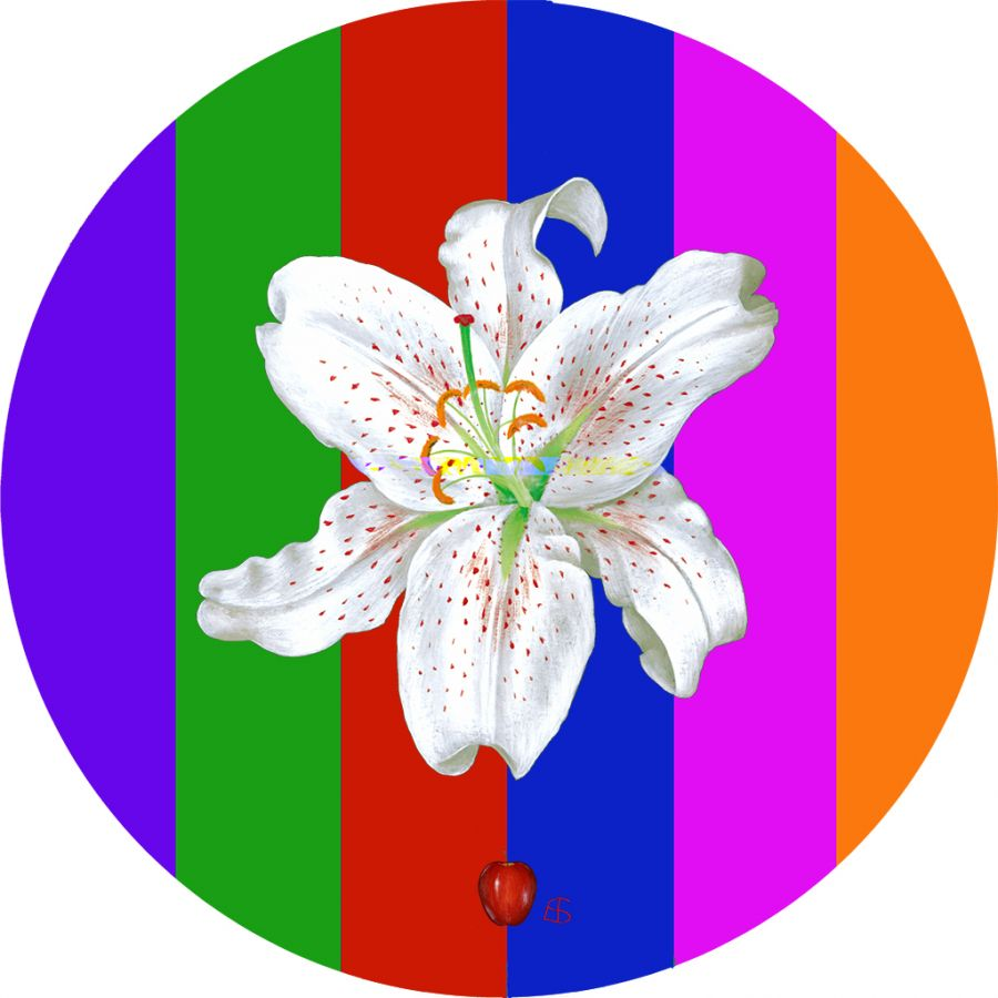White Lily on Stripes Round Table Mats