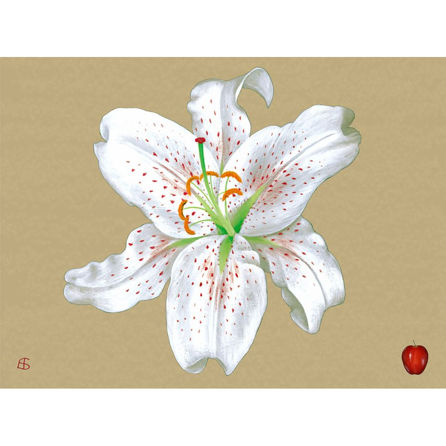 White Lily on Gold Table Mats