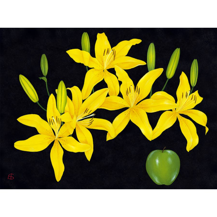Yellow Lilies on Black Table Mats